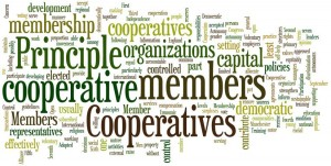 AFREA wordle from 7 cooperative principles