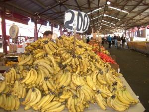 Aussie Bananas - Eye Candy